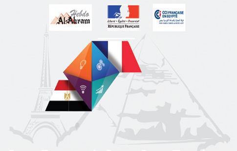 Vid os conf rence investissements fran ais en egypte for Chambre de commerce francaise en egypte
